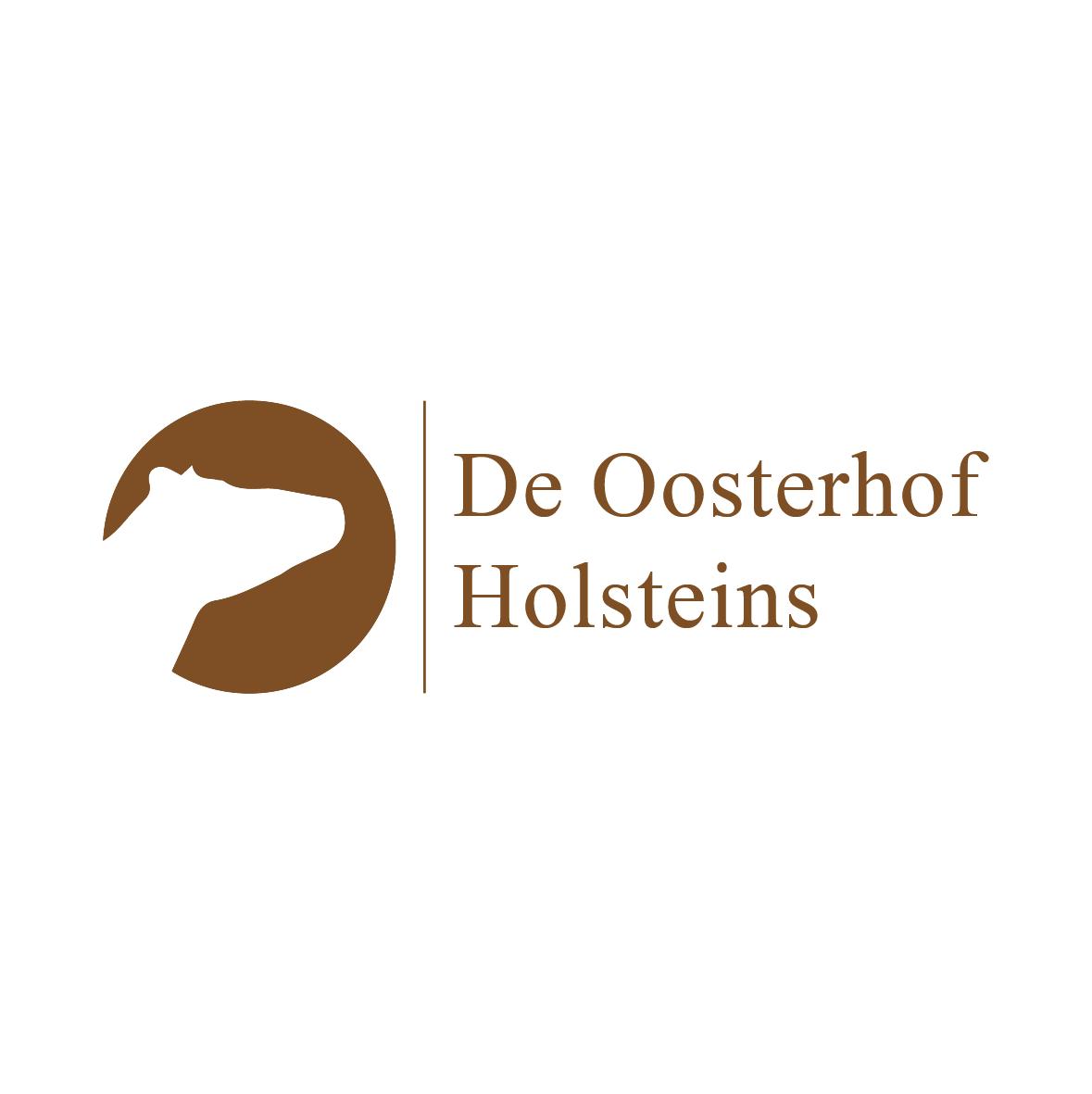 de-oosterhof-holsteins.png